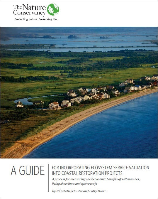 a-guide-for-incorporating-ecosystem-service-valuation-into-coastal-restoration-projects